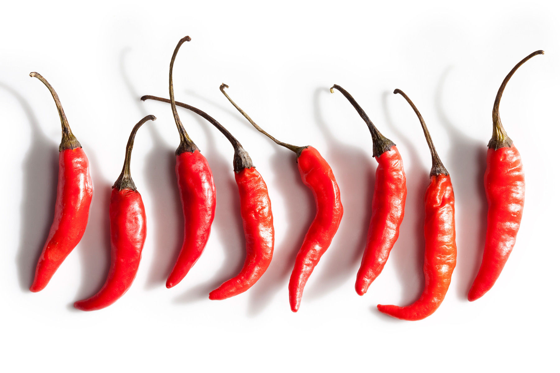 Red Hot Chili Peppers For Life Sunnyanderson Com